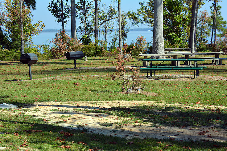 Picnic area next to the Neuse River
