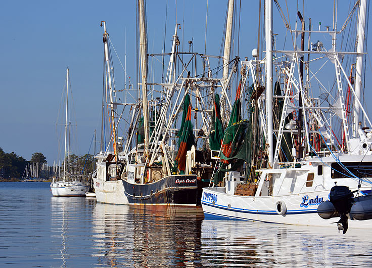 Fishing boats in Oriental, NC